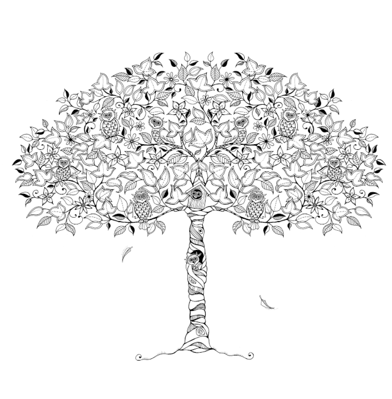 Mein verzauberter Garten: Eine Schatzsuche | Knesebeck Verlag